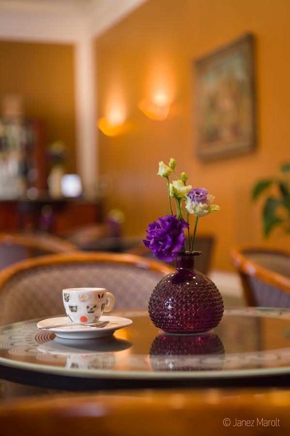 Fotografiranje hotelov - Grand hotel Union, kavarna